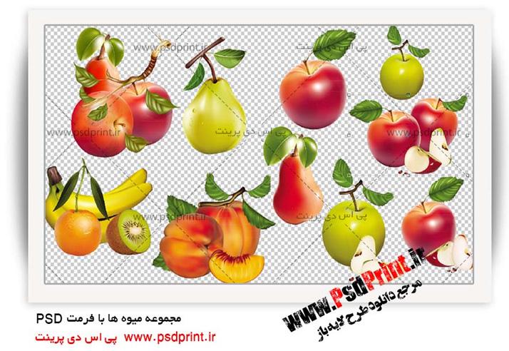 وکتور میوه ها
