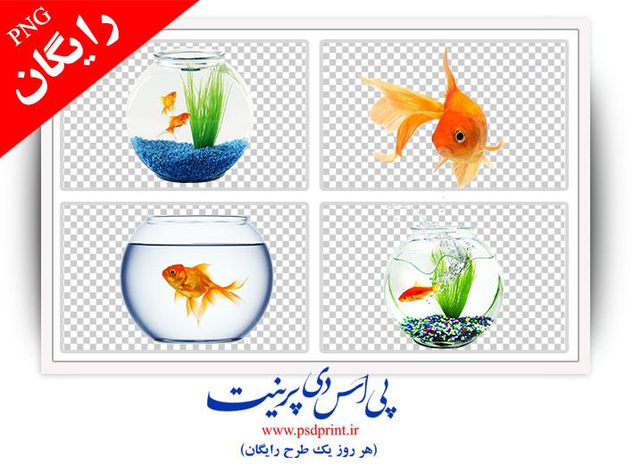طرح رایگان دوربری تنگ ماهی