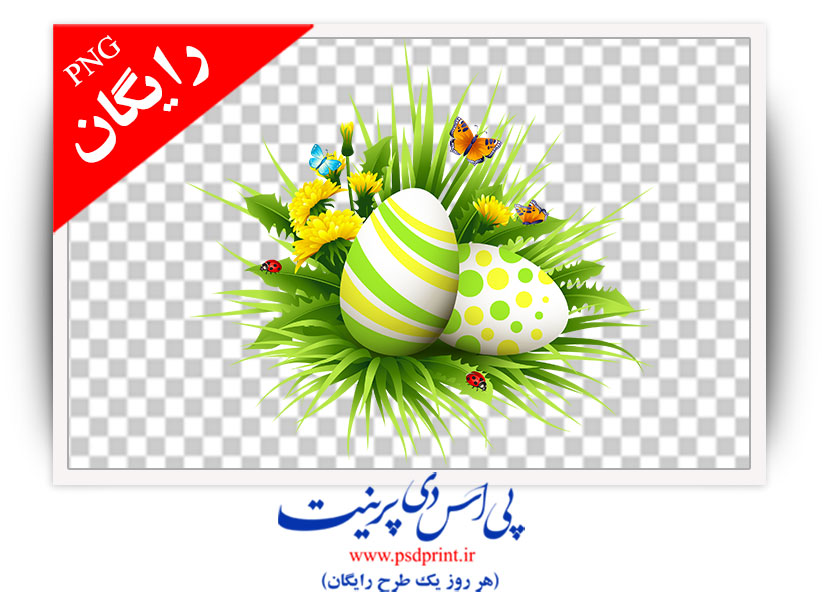 تصویر png تخم مرغ رنگی